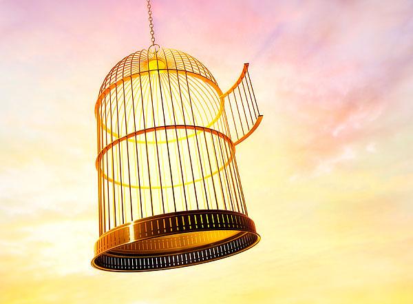 鸟笼逻辑:职场上要善用创造性思维